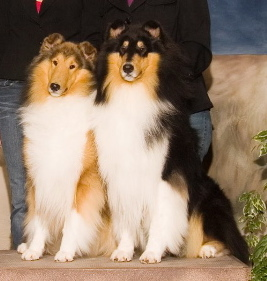 Tirzah & Cole