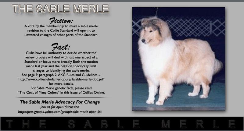 Sable_merle_053009